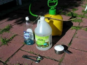 white vinegar organic weed killer