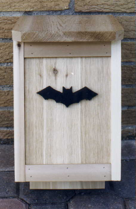 Bats - a gardener's best insect control