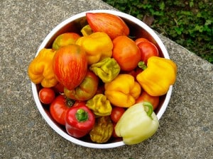 dirty dozen pesticides sweet peppers