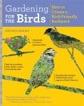attracting birds to garden