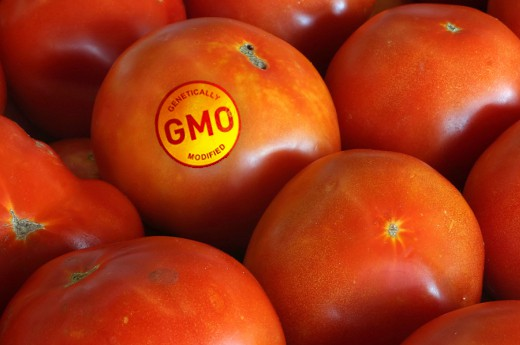 The Real Definition of GMO Will Surprise You