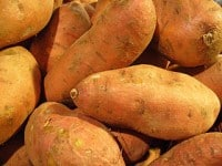 how to grow sweet potatoes in garden