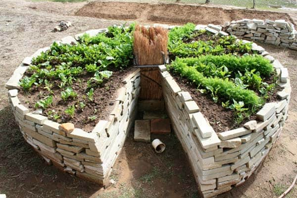 How to build a keyhole garden big blog of gardening for Keyhole garden designs