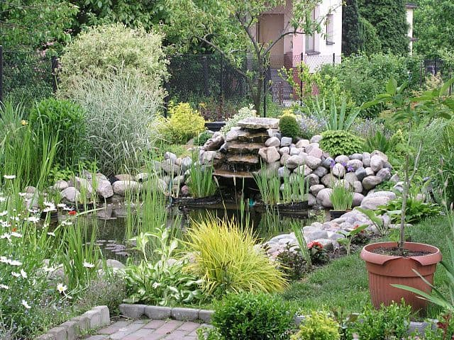 Garden design incorporating a pond into your landscape for Pond yard design