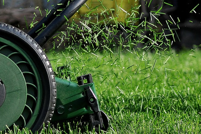 Use a High Quality Lawn Mower for Organic Lawn Care ? Big Blog Of Gardening