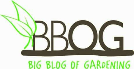Guest Post Article Guidelines ⋆ Big Blog Of Gardening