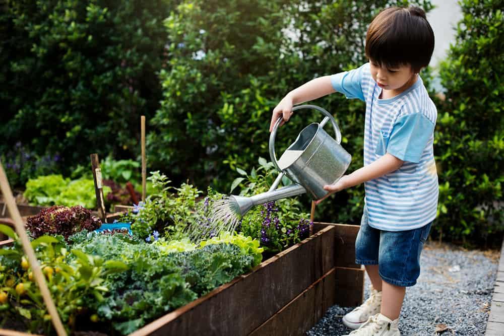 How To Get Kids Interested In Gardening Big Blog Of Gardening